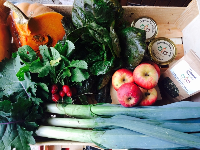 panier-legumes-la-ferme-d'elouise.jpg